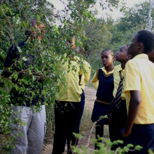Students Learning About The Environment
